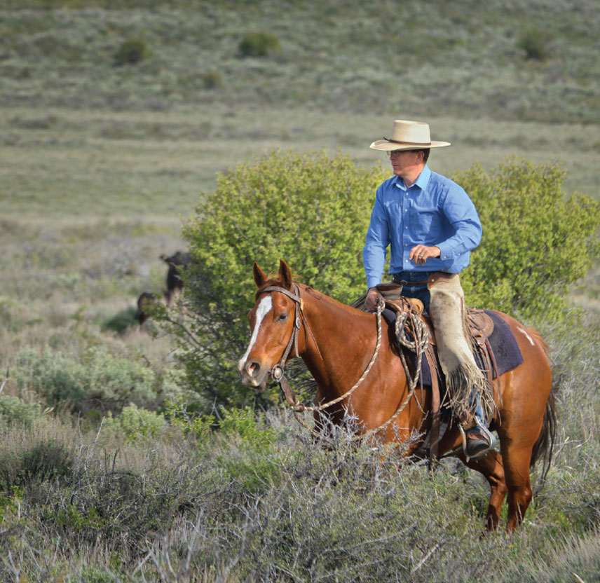 ranch-img2-1